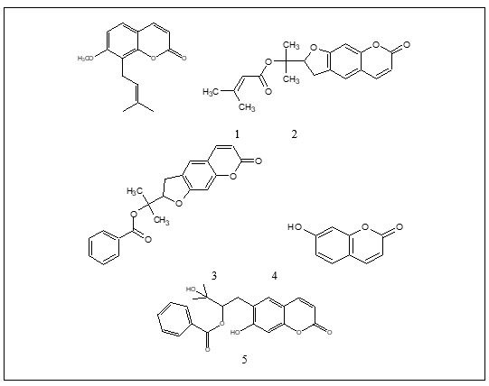 Chemical structures of compounds 1-5