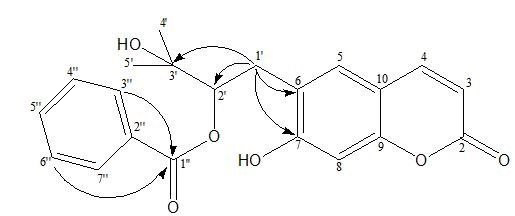 correlations of compound 5