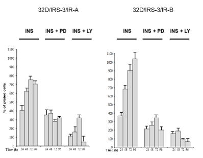 Figure 6: Effect of inhibition of either ERK or PI3K on insulin stimulated proliferation of 32D-derived cells