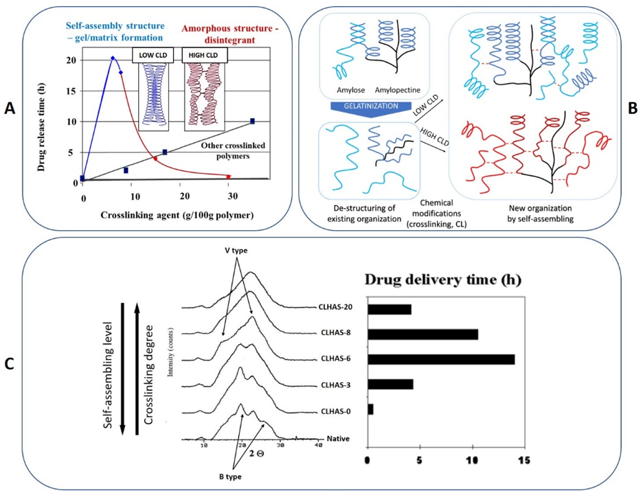 Figure 3: The impact of self-assembly phenomena on starch excipients used in drug delivery
