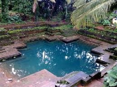 A Kulam (Pond) in Palakkad district, Kerala