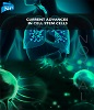 Current Advances in Cell Stem Cells